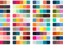10 Best Color Palette Generators in 2021